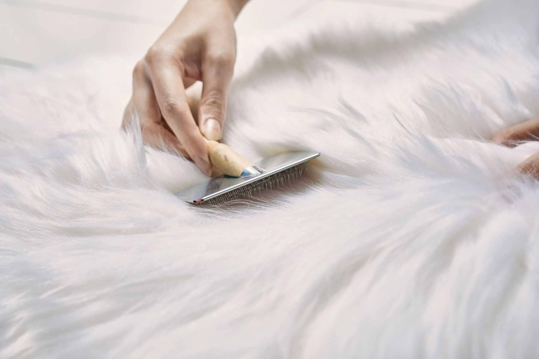 Dịch vụ giặt áo khoác lông thú chuyên nghiệp của chúng tôi