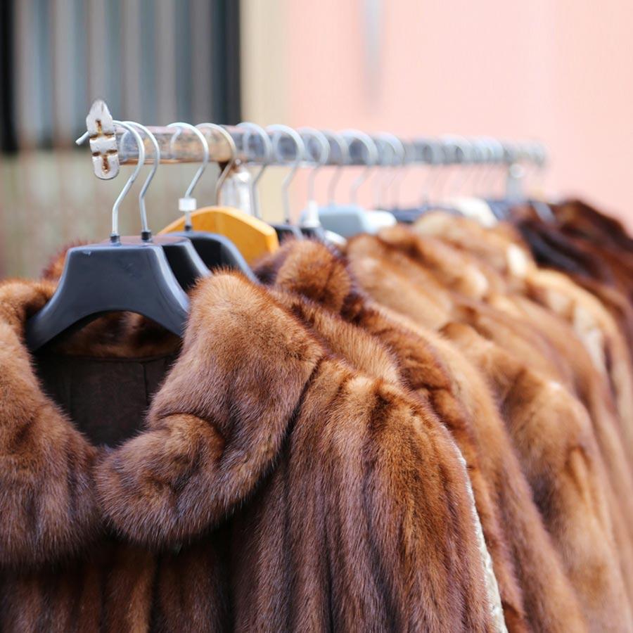 Thực hiện giặt áo khoác lông thú từ giặt ủi công nghiệp Bình Dương